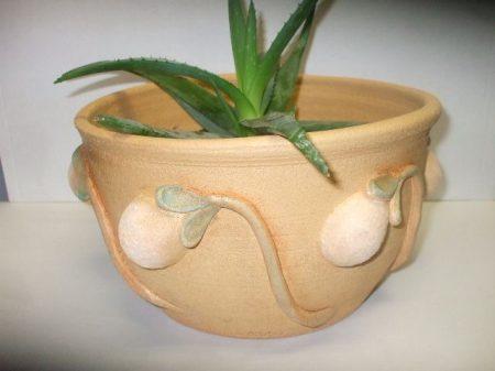 Kaspó, vagy virágcserép bimbókkal